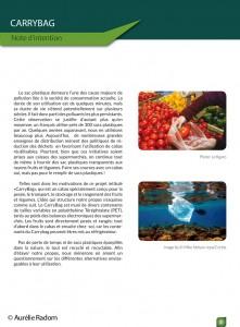 Aurélie Radom pdf Syctom-3
